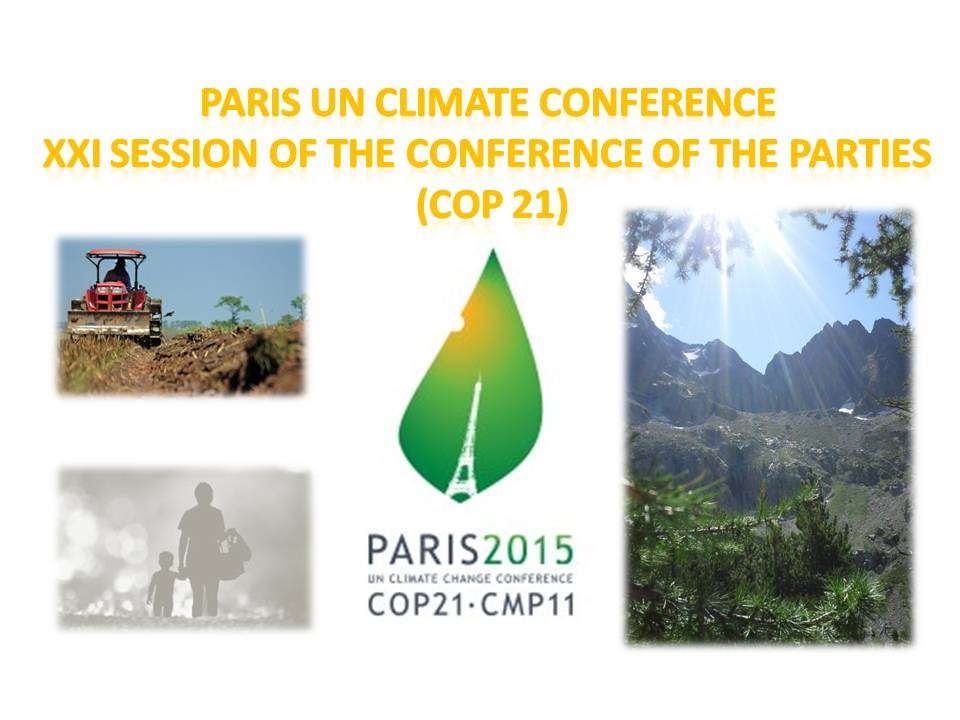 Intervention by Cardinal Peter K. A. Turkson at the High-Level Segment of the UN Paris Climate Change Conference (COP 21)